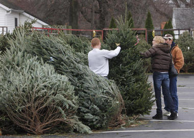christmas tree salesjpg - Christmas Tree Market
